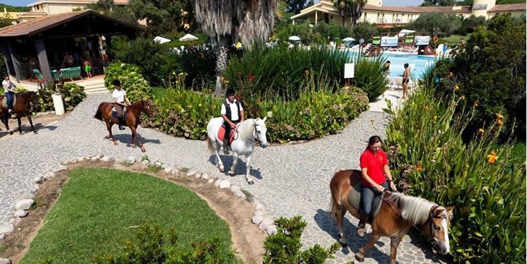 asd_horse_2