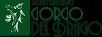 Gorgo del Drago