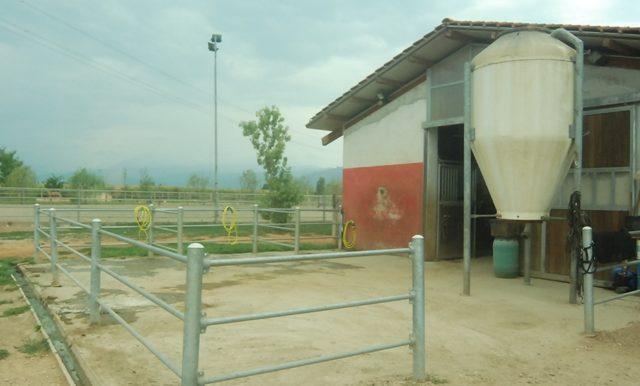 campo_coperto_1
