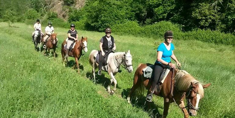 Cavallo Duska – Le Ginestre