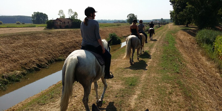 home-villa-stabbia-jul-horses-2015-04-big
