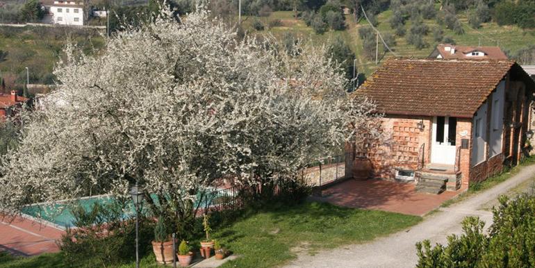 home-villa-stabbia-may-2015-09-big
