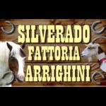 Silverado Fattoria Arrighini