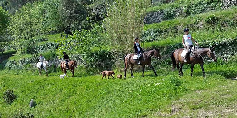 sports360-finale-ligure-equitazione-easy-horse-center-passeggiate-cavallo-04