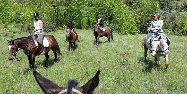 sports360-finale-ligure-equitazione-easy-horse-center-passeggiate-cavallo-12