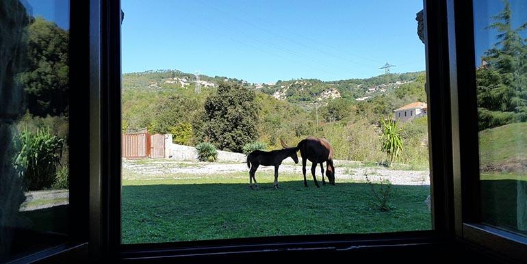 sports360-finale-ligure-equitazione-easy-horse-center-passeggiate-cavallo-28